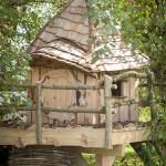 Cabane de Nuton en Ardenne